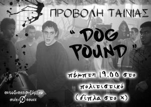 dog_pound